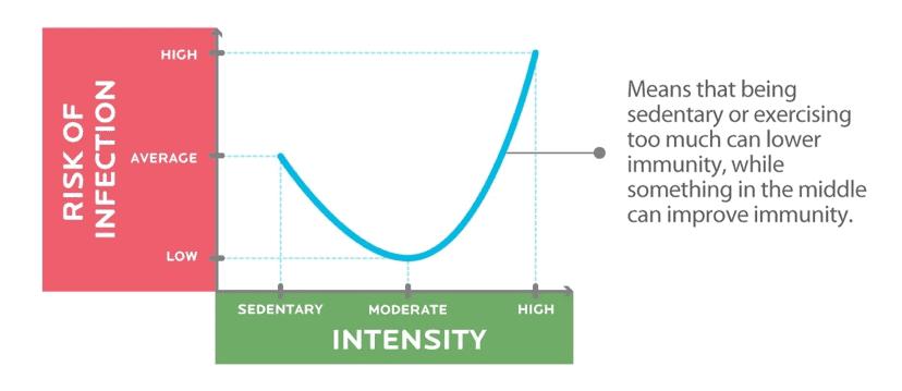 Kurva J-curve antara intensitas olahraga dan sistem imun tubuh